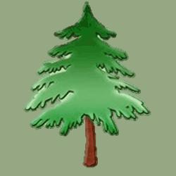 Pine Class Tree